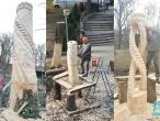 arta-in lemn